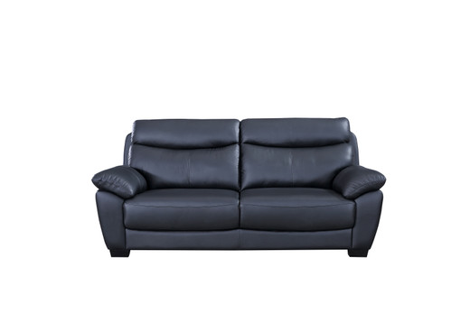 Etonnant Evan Genuine Leather Sofa Black