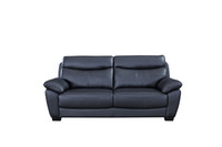 Evan Genuine Leather Sofa Black