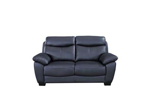 Evan Genuine Leather Loveseat Black