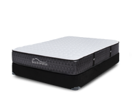 Brawn Extra Firm Twin Mattress by Restwell