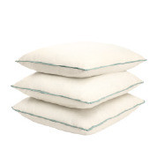 """18"""" x 18""""  Pillow with Cordless Welt"""