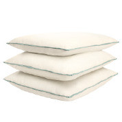 """22"""" x 22""""  Pillow with Cordless Welt"""