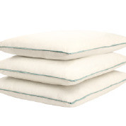 """24"""" x 24""""  Pillow with Cordless Welt"""