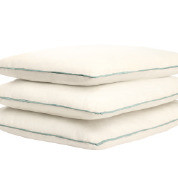 """30"""" x 30""""  Pillow with Cordless Welt"""