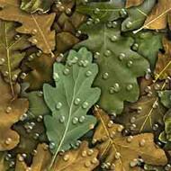 ArtScape 9' Oak Leaves Pool Table Cloth