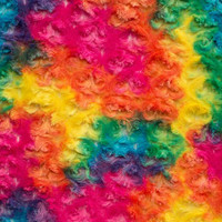Vibrant Rainbow Minky Rose - 1/2 yard