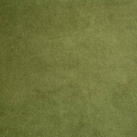 Cactus Minky Smooth - 1/2 yard