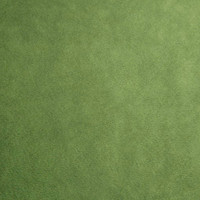 Kiwi Minky Smooth - 1/2 yard