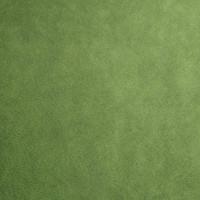 Kiwi Minky Smooth - 1/2 yard