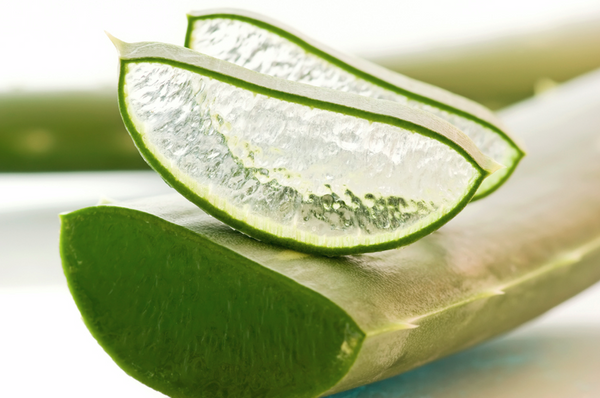 All About ALOE!!
