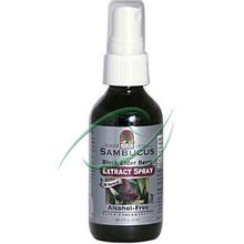 Sambucus Black Elder Berry Extract Spray Alcohol-Free 2 fl oz (60 ml) From Nature's Answer