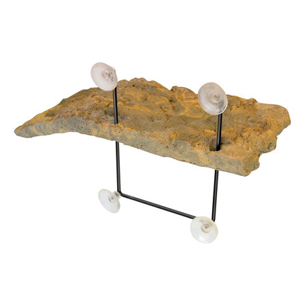 Shop with us for the best turtle basking platforms.