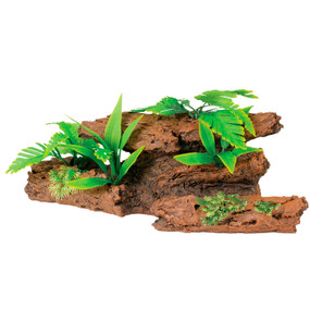 Malaysian Driftwood With Plants