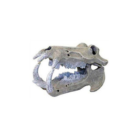 Exotic Environments Hippo Skull Mini