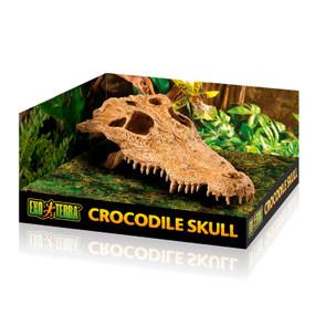 Exo Terra Crocodile Skull Hiding Place