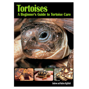Tortoises A Beginners Guide To Tortoise Care