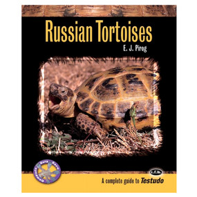 "Russian Tortoises ""A complete guide to Testudo"""
