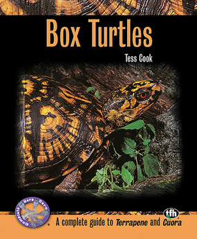 TFH Box Turtles by Tess Cook