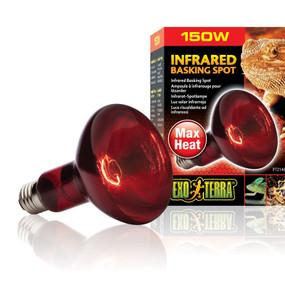 Exo Terra 150 watt heat glo bulb.