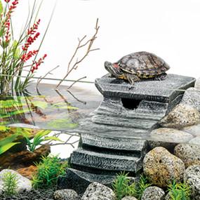 My Turtle Store Tetrafauna Turtle Tank Viquariums For Sale