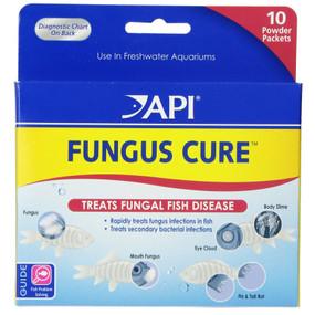 API Turtle Fungus Cure.