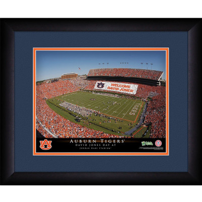 Auburn Tigers Personalized Stadium Print
