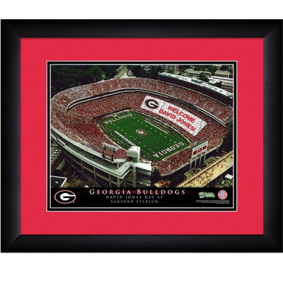 Georgia Bulldogs Personalized Stadium Print