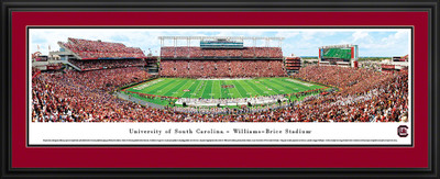 South Carolina Gamecocks Panoramic Photo Deluxe Matted Frame - 50 Yard Line