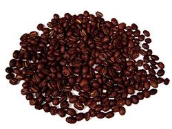 Kopi luwak (civet coffee) perfect and clean beans