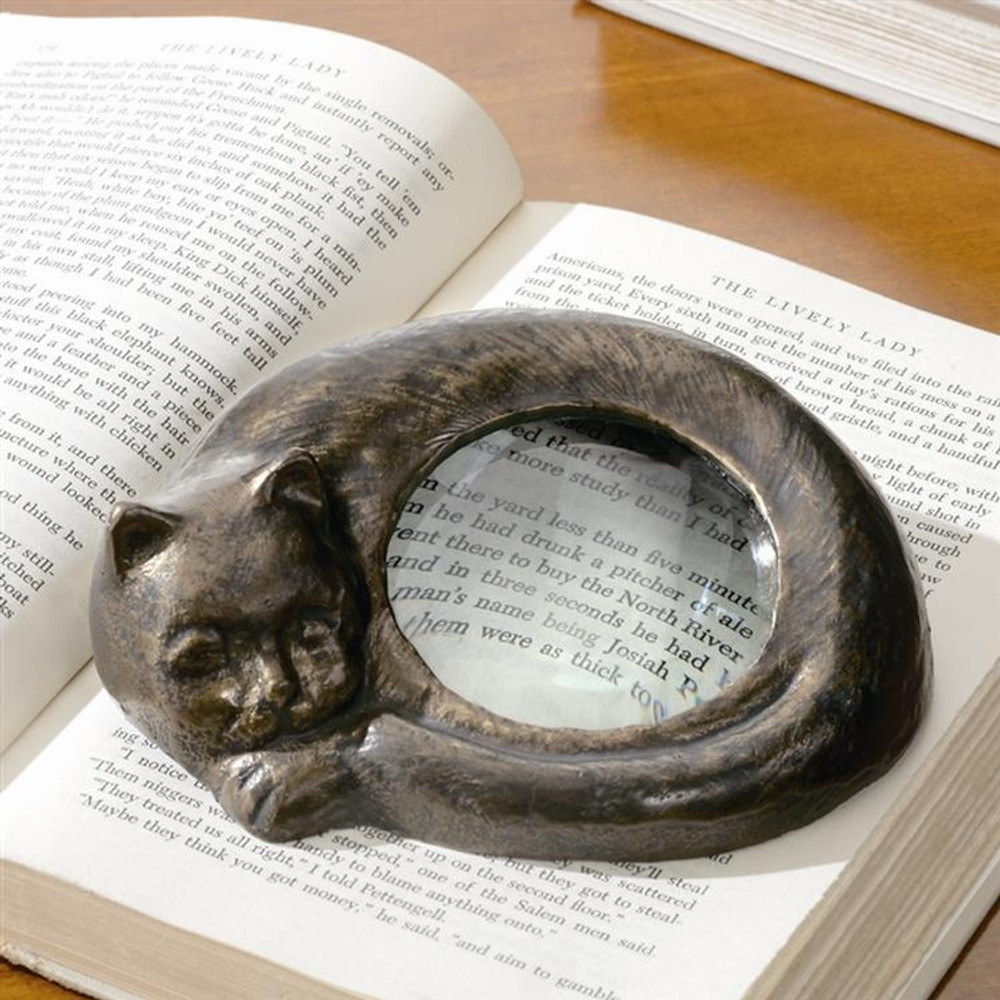 Curled Cat Reading Magnifier
