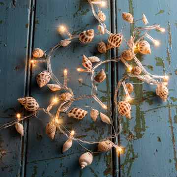 String Lights - Small Seashell