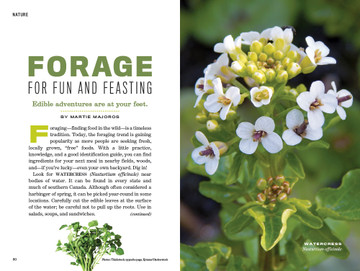 Plants You Can Eat - Old Farmer's Almanac