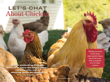 About Chickens - Old Farmer's Almanac