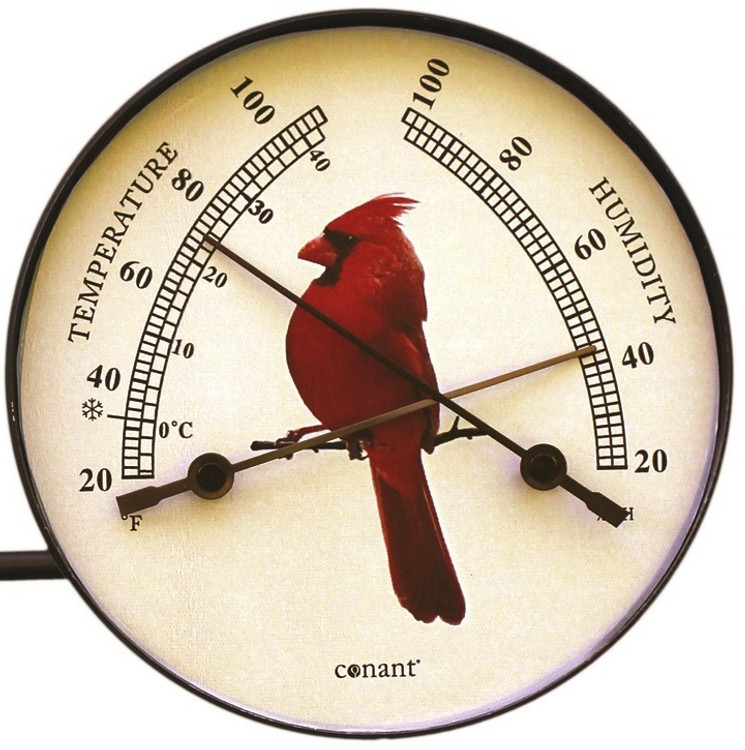 Cardinal Window Thermometer