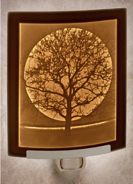 Lithophane Night Light - Midnight Moon