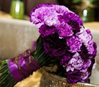 Wedding Package-Carnations