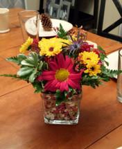 Seedlings from The Bloom Closet Florist in Martinez, GA
