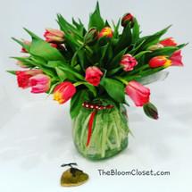 Multi Color Tulips