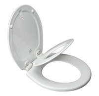 Bemis 483SLOW Round Next Step Potty Seat