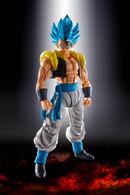 S.H. Figuarts Super Saiyan God Super Saiyan Gogeta (Dragon Ball Super: Broly) *PRE-ORDER*