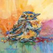 Baby Meadowlark #9