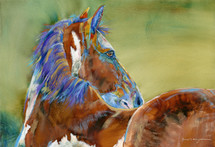 Horse - Zeus - Limited Edition - Sold