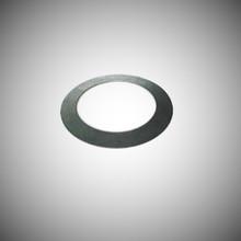 Disc Spring - (DOR100317)