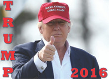 """TRUMP 2016"" 4x6 Inch Political Bumper Sticker"