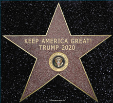 PRESIDENT DONALD TRUMP 2020 - KEEP AMERICA GREAT! HOLLYWOOD WALK OF FAME STAR 5-1/2x6 Inch Political Bumper Sticker
