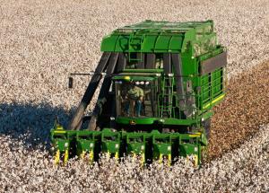 Cotton Pickers in America