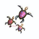 Turtles-127