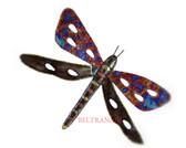 Dragonfly-078