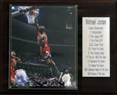 "NBA 12""x15"" Michael Jordan Chicago Bulls Career Stats Plaque"