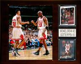 "NBA 12""x15"" Michael Jordan- Scottie Pippen Chicago Bulls Player Plaque"